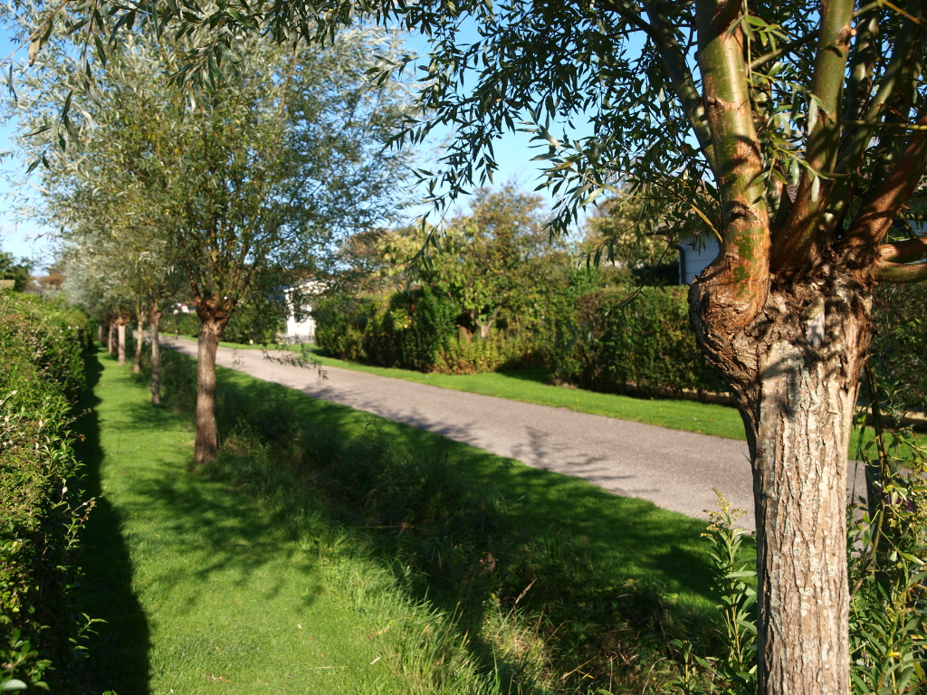 Caravanpark 't Moolhof